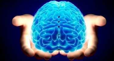 სამი რჩევა ნეირობიოლოგებისგან: როგორ ვისწავლოთ – არ გავბრაზდე არასდროს