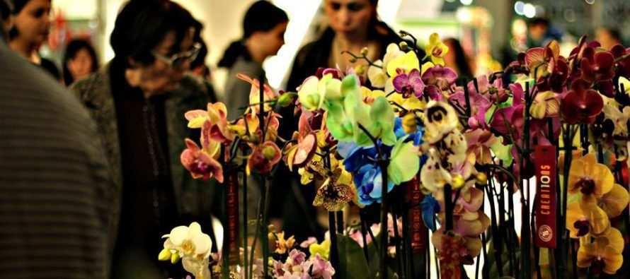 ყვავილების დღეები «ქარვასლაში»