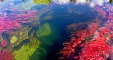 მსოფლიოს ყველაზე ლამაზი მდინარე