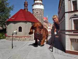 silesia-park-of-miniatur-13