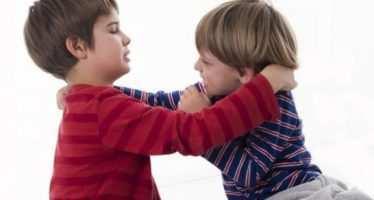 მასწავლებლის თვალით დანახული ბავშვების აგრესიის ზოგიერთი მიზეზი