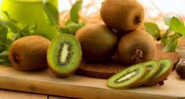 კივი- ვიტამინებით მდიდარი, სხვადასხვა დაავადებების მკურნალი ხილი