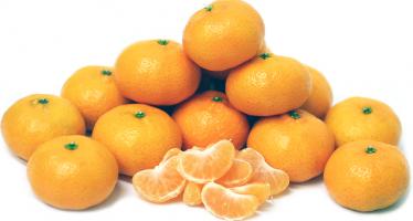 მანდარინი- ხილი საოცარი სამკურნალო თვისებებით