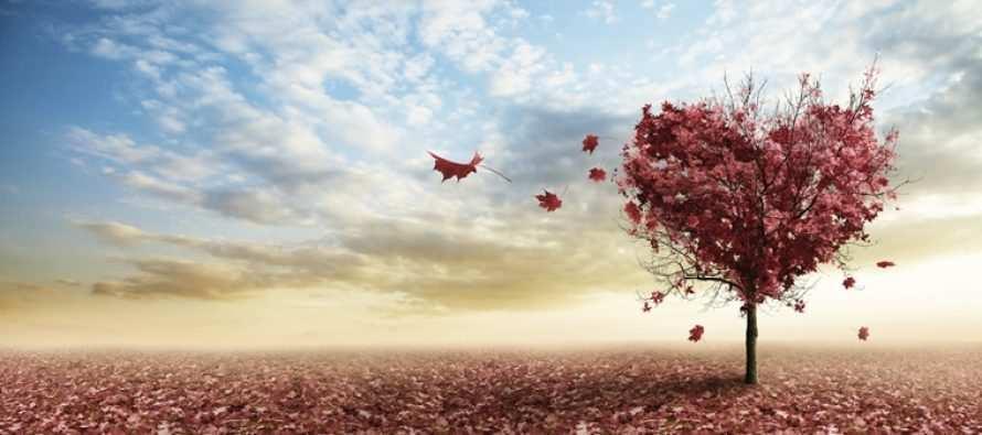 """""""მიუხედავად იმისა ვაცნობიერებთ თუ არა, ჩენს ცხოვრებაში მხოლოდ ის ხდება, რაც"""" ……"""