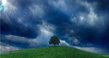 ქართულ ენაში წვიმას 64 სახელი აქვს