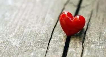 """""""ნებისმიერი გული, რომელიც თქვენ ხელში აღმოჩნდება""""…"""