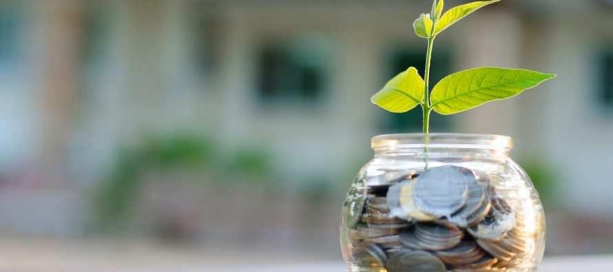 ისწავლეთ ფულთან სწორად მოპყრობა