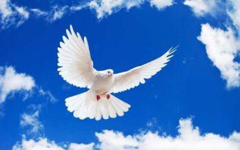 """""""ყველა ადამიანს ისეთივე ღმერთი ჰყავს, როგორიც თვითონ არის"""""""