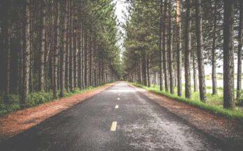 ეს 5 შეკითხვა დაგანახებთ თქვენი ცხოვრების გზას…