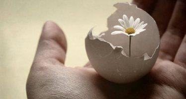 წარმატების 15 მარტივი ჩვევა