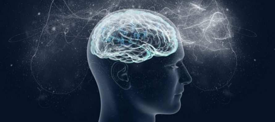ტვინის საკვები ნივთიერებები – რითი უნდა ვიკვებოთ?