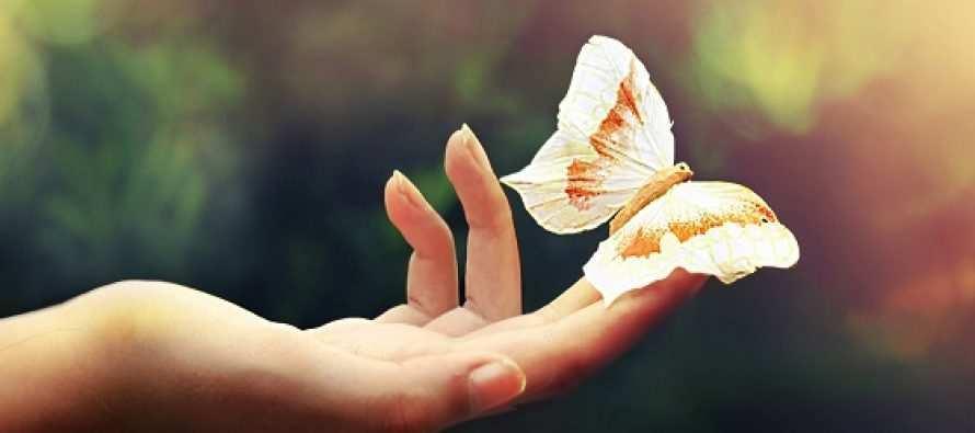გიყვარდეს სიცოცხლე და გახსოვდეს სიკვდილი