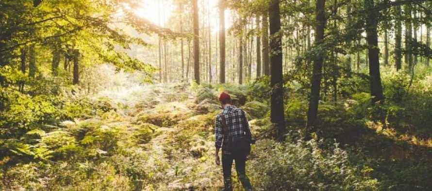 ცხოვრების სცენარის ანუ ბედისწერის მართვა და შეცვლა სრულიად შესაძლებელია