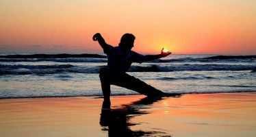 დაოსურიფილოსოფიისძალა — სტრესებისა და მავნე ემოციების გარდაქმნა დადებით ენერგიად…
