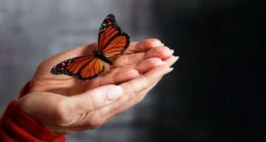 მაშინ შენ მიიღებ ბედნიერებას და გექნება ჰარმონიული ცხოვრება…