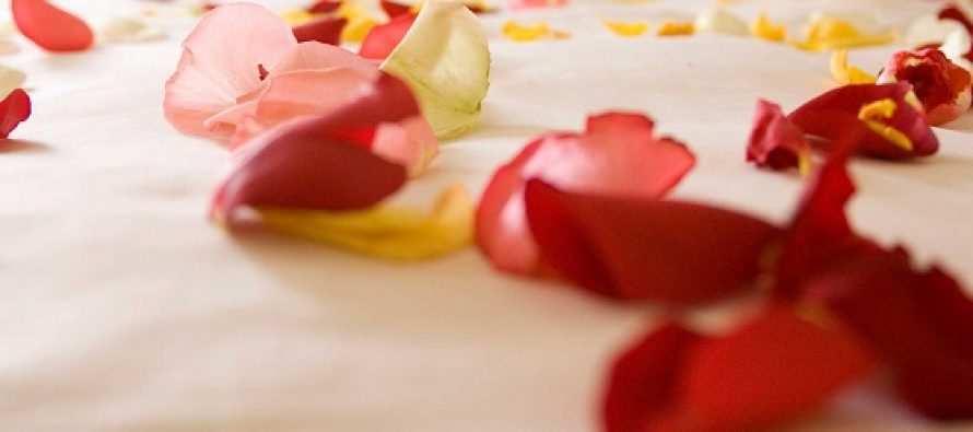 """""""სიყვარულის ოთახი მხოლოდ სიყვარულის ვიბრაციებით უნდა იყოს გაჟღენთილი"""""""