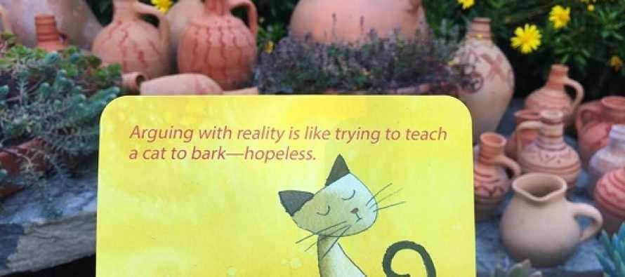 """""""ყოველგვარ სტრესს რეალობასთან კამათი იწვევს"""""""