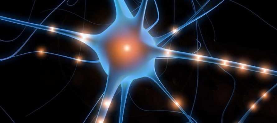 გააცნობიერეთ, ქიმიური გრიგალი, რომელიც ბობოქრობს თქვენს ტვინში