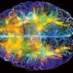 """""""ავარჯიშეთ საკუთარი ტვინი, აიძულეთ ხშირად იფიქროს პოზიტიურზე"""""""