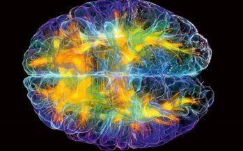 «ავარჯიშეთ საკუთარი ტვინი, აიძულეთ ხშირად იფიქროს პოზიტიურზე»